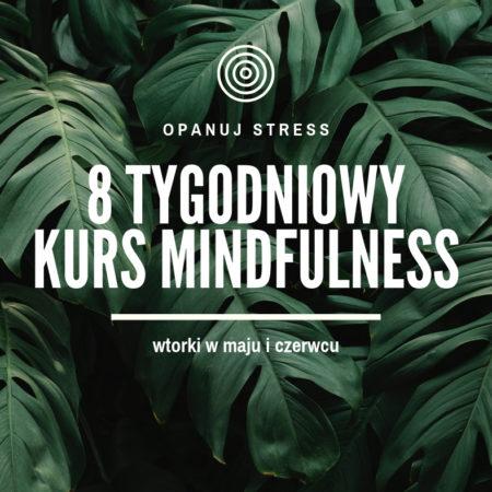 Otwieram rekrutacje na wiosenny kurs mindfulness w Warszawie
